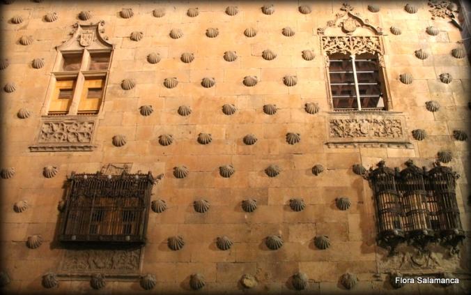 Casa de las conchas ,fachada